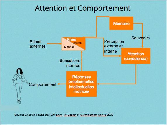 Attention et comportement
